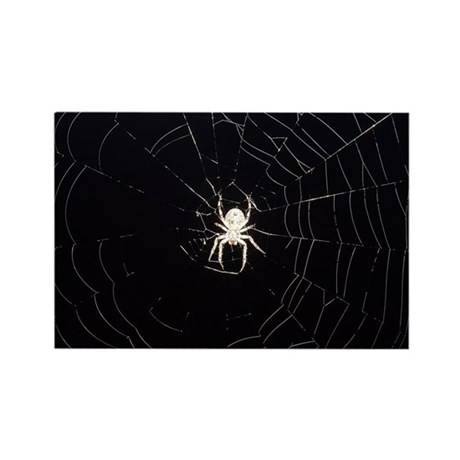 Spooky Spider Rectangle Magnet
