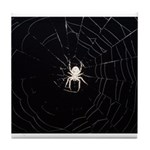 Spooky Spider Tile Coaster