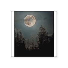 Wolf Moon 2013 Sticker