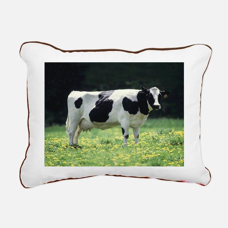 Holstein Meadow Small Rectangular Canvas Pillow