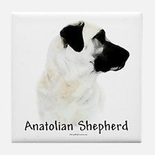 Anatolian Charcoal Tile Coaster