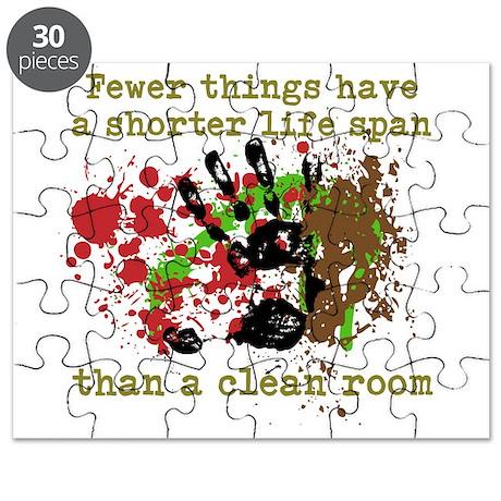 Clean Room Puzzle