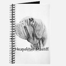 Neo 13 Journal
