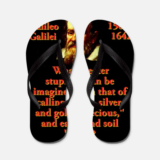 What Greater Stupidity - Galileo Flip Flops
