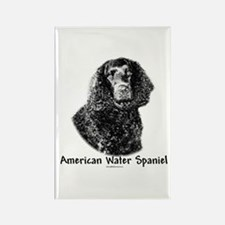 Water Spaniel Charcoal Rectangle Magnet