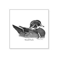 "Wood Duck Square Sticker 3"" x 3"""