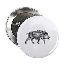 "Wild Boar 2.25"" Button"