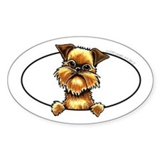 Brussels Griffon Peeking Bumper Decal
