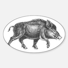 Wild Boar Decal