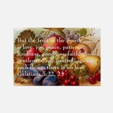 Fruit of the Spirit Rectangle Magnet