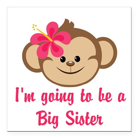 Big Sister to Be Pink Monkey Square Car Magnet 3""