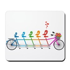 colorful tandem bicycle with cute birds family Mou
