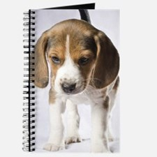 Beagle Puppy - Journal