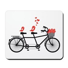 tandem bicycle with cute love birds, vector Mousep