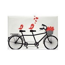 tandem bicycle with cute love birds, vector Rectan
