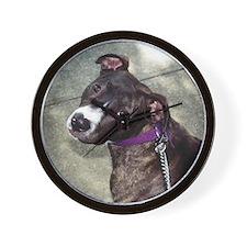 Pit Bull Wall Clock - Niquita