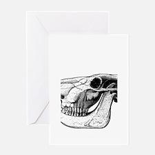 Bull Skull Greeting Card