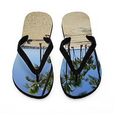 Waikiki Beach Flip Flops
