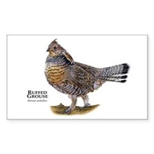 Ruffed Grouse Decal