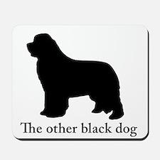 Newfoundland : The other black dog Mousepad