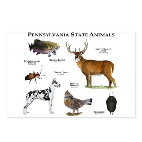 Pennsylvania State Animals Postcards (Package of 8