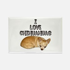 Chihuahua Kiki Rectangle Magnet