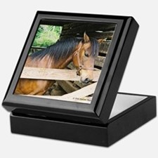 Morgan Horse Keepsake Box