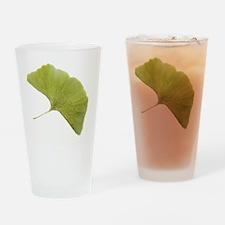 Maidenhair leaf (Ginkgo biloba) - Drinking Glass