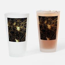 Motor neurons, light micrograph - Drinking Glass