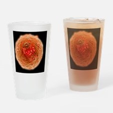 Human papilloma virus - Drinking Glass