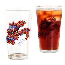 Hammerhead ribozyme molecule - Drinking Glass