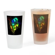 Insulin molecule - Drinking Glass