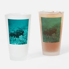 Coelacanth fish - Drinking Glass