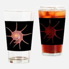 Yoka star turban shell - Drinking Glass