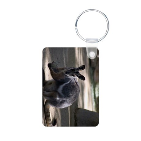 Yellow-Footed Rock Wallaby Keychains