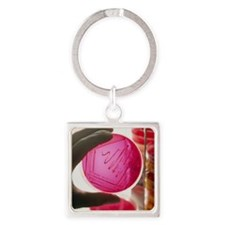 cultured bacteria - Square Keychain