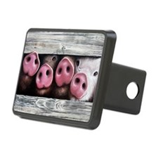 Four in a Row Hitch Cover