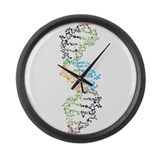 Biology Giant Clocks