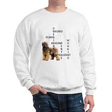 Briard crossword Sweatshirt