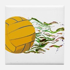 Flaming Waterpolo Ball US Olympics Swimming Fish T
