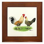 Norwegian Jaerhons Chickens Framed Tile