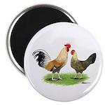 Norwegian Jaerhons Chickens Magnet