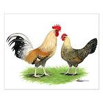 Norwegian Jaerhons Chickens Small Poster