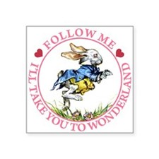 alice RABBIT follow me2 PINK copy.png Square Stick