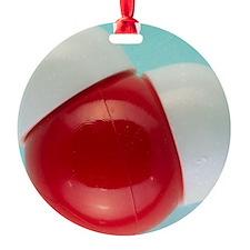 er - Ornament (Aluminum)