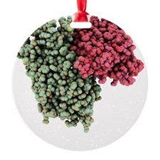 Rhodopsin molecule - Ornament (Aluminum)