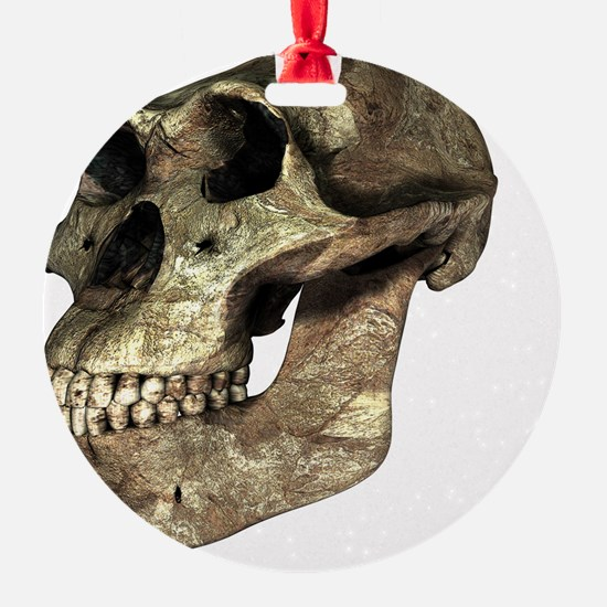 nsis, artwork - Ornament (Aluminum)