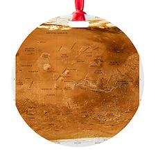 , satellite image - Ornament (Aluminum)