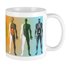 Human anatomy ,artwork - Mug