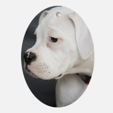 Boxer Puppy - Oval Ornament